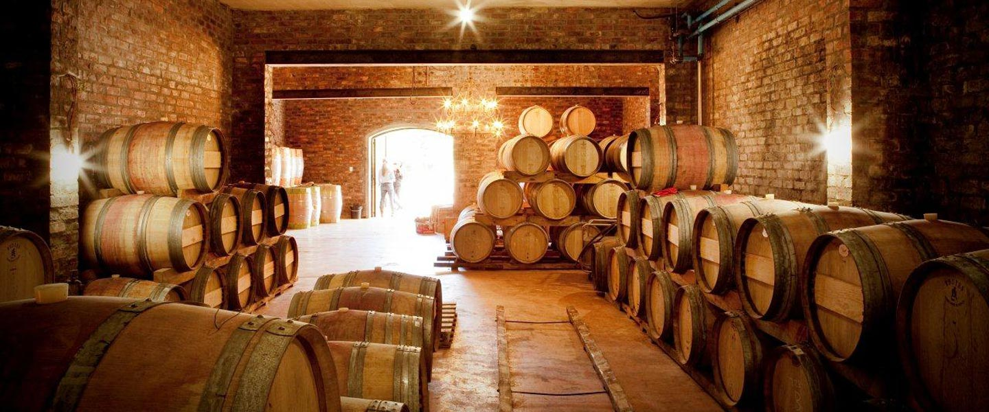 Barrel cellar with large wine barrels by Newton Wines.