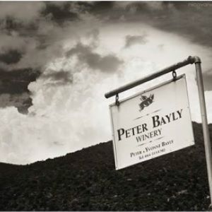 Peter Bayly Wines supplied by Newton Wines of Devon